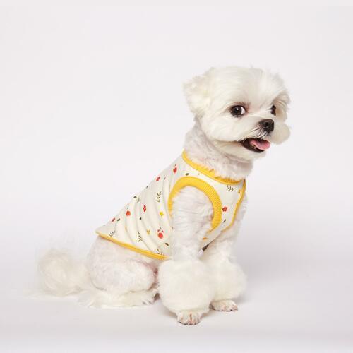 宠物狗服饰 Yellow S