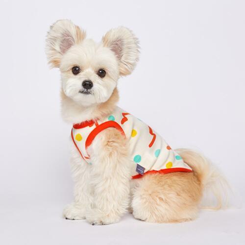 宠物狗服饰 Red XL