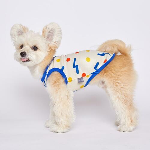 宠物狗服饰 Blue L